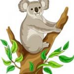 Schemi a Punto Croce – Koala