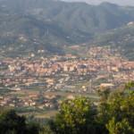 Arte e Ricamo – Armonia di Alberi a Sarzana